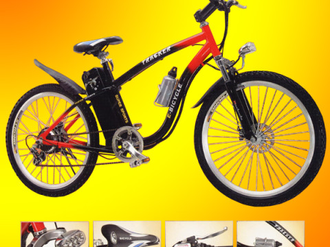 Mountain Bike Elettrica 6 marce