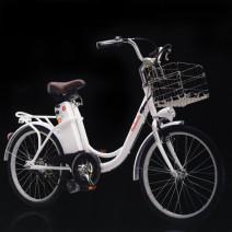 Bicicletta Elettrica Modello Giardinetta